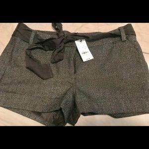 Women's express dress shorts